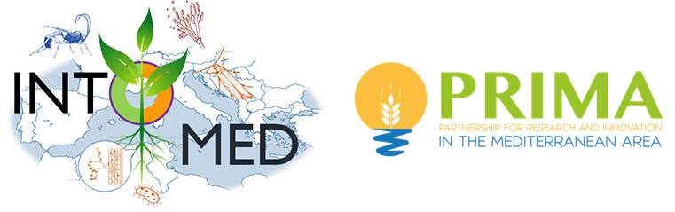 Intomed - Innovative tools to combat crop pests in the Mediterranean